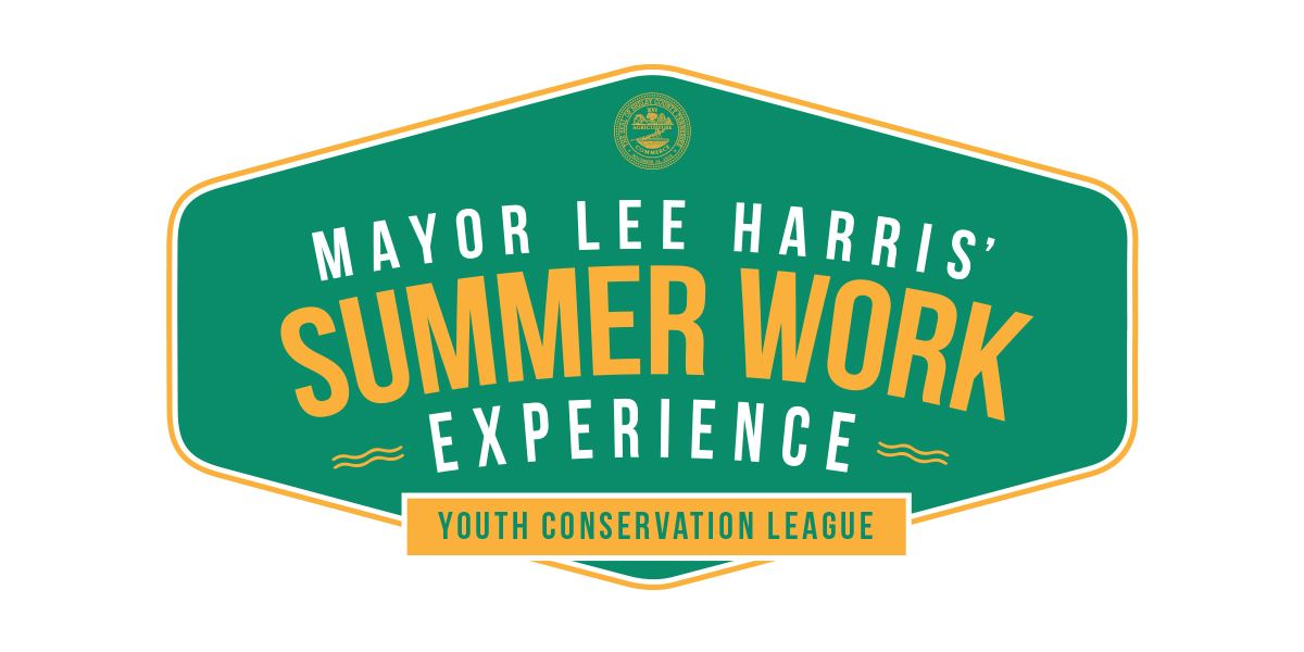 Summer Work Experience - YCL